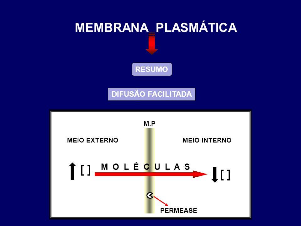 MEMBRANA PLASMÁTICA [ ] [ ] M O L É C U L A S RESUMO